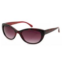 Designer Sunglasses - HB Cabrice