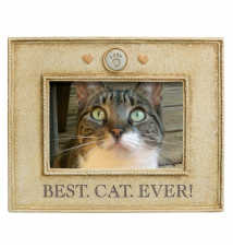 *Best Cat Ever* 4* x 6* Photo Frame