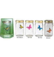 Electronic Butterfly in A Jar - My Pet Butterfly