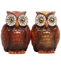 Brown Owl Salt and Pepper Shakers #195