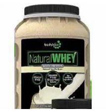 bodylogix Natural whey GNC