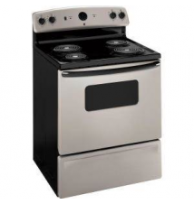 GE 5.0 cu. ft. Electric Range in Silver Metallic Home Depot