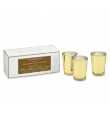 Spiced Chestnut Votive Candles, Set of 3 Williams-Sonoma