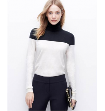 Colorblock Everyday Turtleneck Ann Taylor