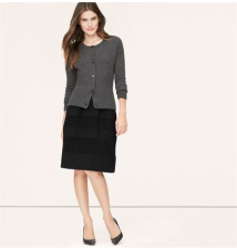 Lace Stripe Skirt Ann Taylor Loft