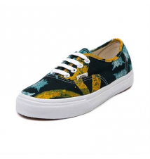 Vans Della Authentic Skate Shoe Journeys