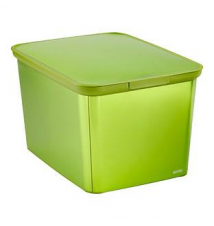 Metallic Green Decobox The Container Store
