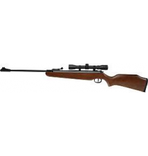 Ruger Air Hawk Rifle Sports Authority